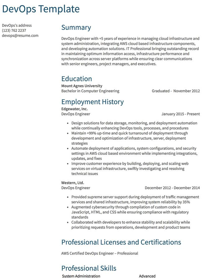 IT And Developer Resume Examples